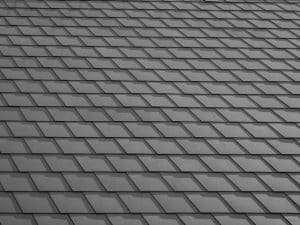 Shingle Roofing In Tampa FL