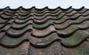 Tile Roofing In Tampa FL