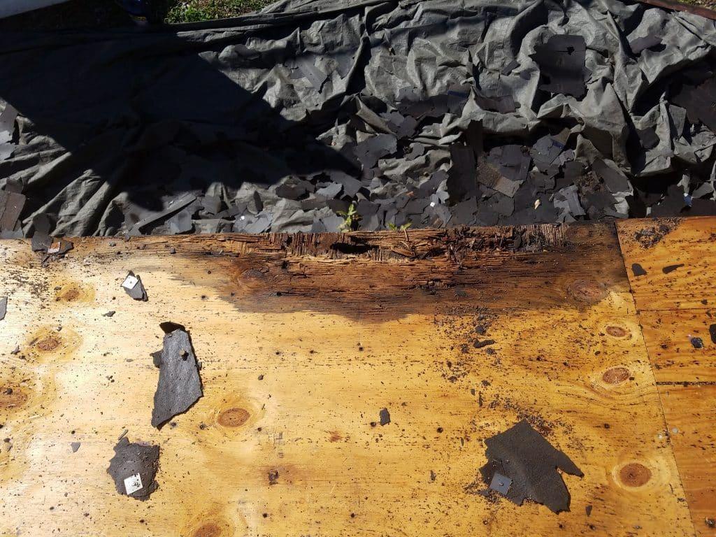 Sarasota FL Roof Leak Repairs