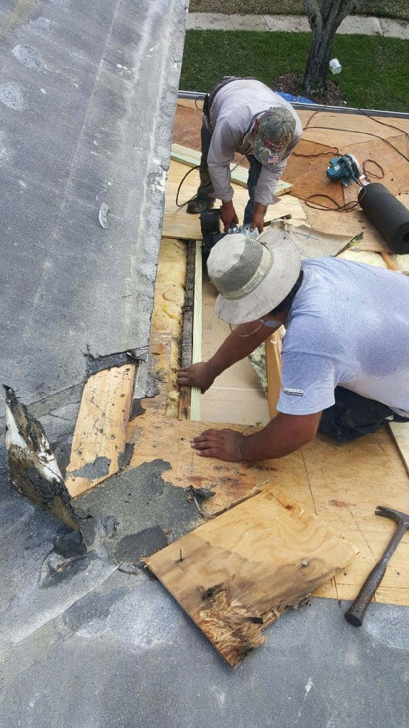 Roofing Contractors in Tampa Florida